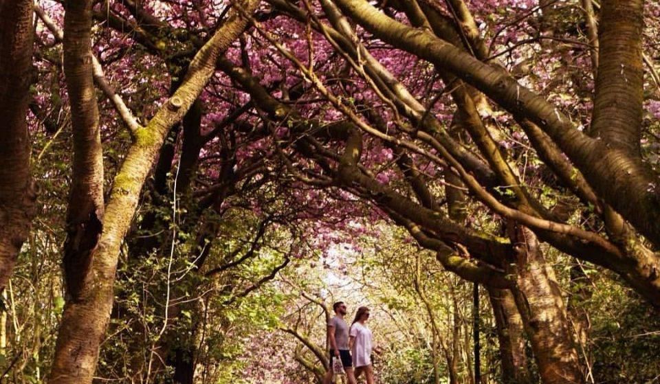 10 Picture-Perfect Places In Greater Manchester