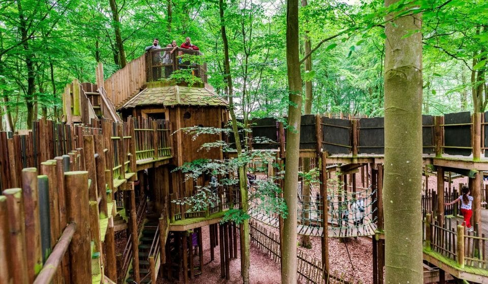 A New Woodland Adventure Park Is Coming To The North West In 2021