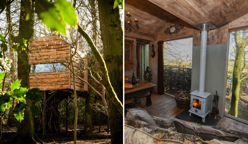 This Hidden Treehouse In Cumbria Is The Perfect Social-Distanced Getaway